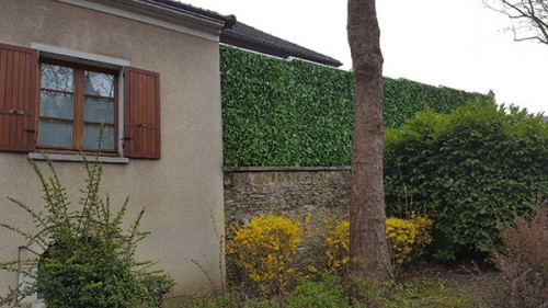 Mur anti bruit végétalisé route après